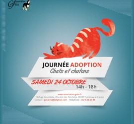 samedi 24 octobre Journée adoption chats
