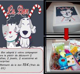 La box de Noël Galia